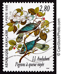 Postage stamp France 1995 Band-tailed Pigeon, Bird - FRANCE...