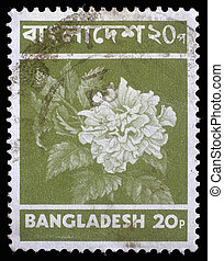 BANGLADESH - CIRCA 1970: Stamp printed in Bangladesh shows...