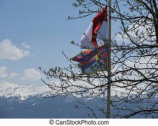 Tibetflagge und Aeste in