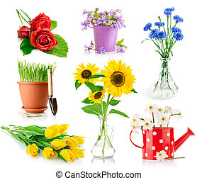 set bouquet flowers in vase and pot isolated on white...