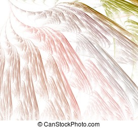 Feathery Layers Abstract - Pastel colorful, layered texture...