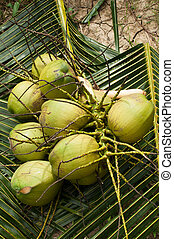 Green coconut on a palm leaf background