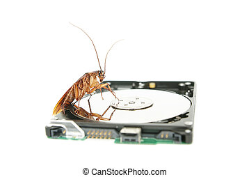 Cockroach climbing on hard disk drive to present about...