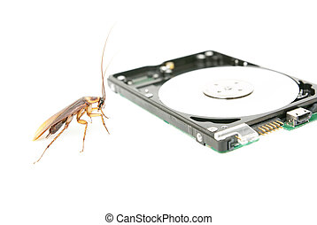Cockroach and hard disk drive to present about computer...