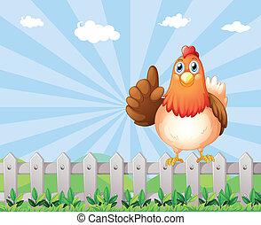 Um, grande, gorda, galinha, acima, cerca