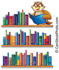 An owl above the wooden bookshelves with books -...