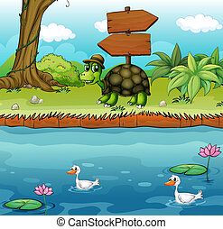 A turtle near the wooden arrowboards at the riverbank -...