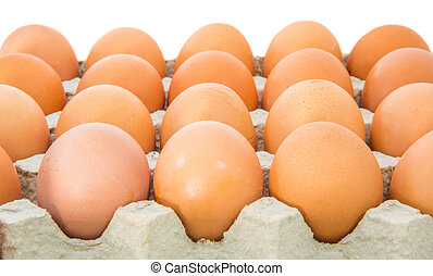 Chicken Eggs In Egg Carton - Eggs in an egg carton