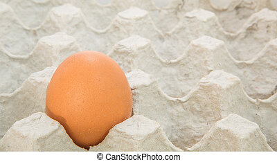 Chicken Egg In Egg Carton - An egg in an egg carton