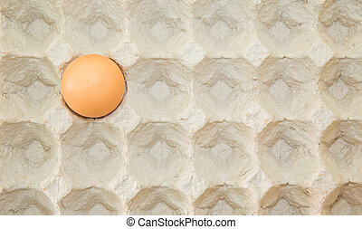 Egg In Egg Carton - An egg in an egg carton
