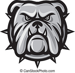 Bulldog head angry bulldog, bulldog vector illustration