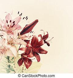 vindima, lírio, flores, fundo
