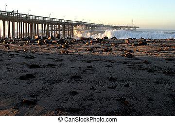 Ventura Pier Sturm Wave