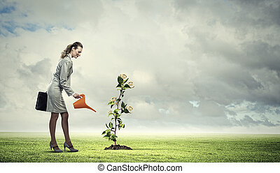 Business woman watering monet tree - Image of business woman...