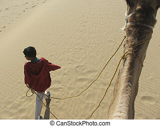 boy walking camel - rajistani boy walking a camel in thar...