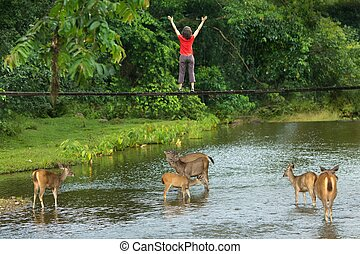 Woman with deer drinking in a stream