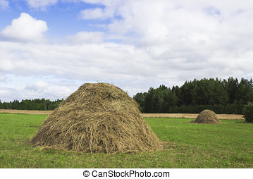 A pair of haystacks  on a green meadow