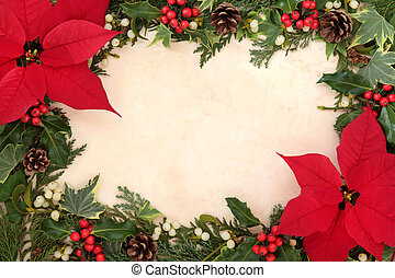 Poinsettia Flower Border - Thanksgiving and christmas border...