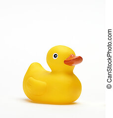 Classic Squeak Toy Rubber Ducky isolated on white ground