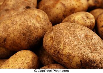 Russet Potatoes Close Up - A close up shot of Russet...