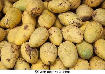 Mangoes. - Pile of mangoes in market.