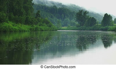 Calm landscape with quiet river in a green forest