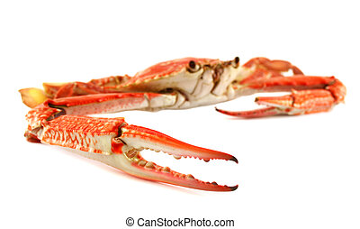 Cooked Blue Swimmer Crab - Cooked sand crab or blue swimmer...