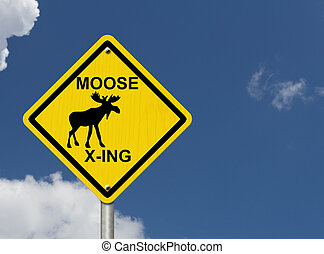 Use caution moose are present - An warning sign with blue...