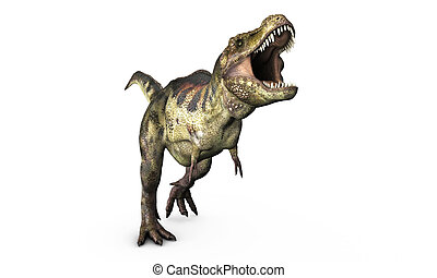 tyrannosaurus rex isolated on white background