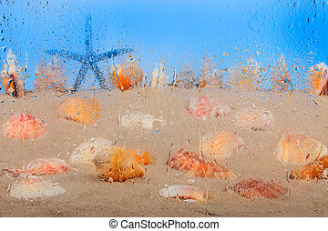 Starfish and seashells through droplets of water, as...