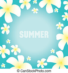 Summer background with frangipani flowers