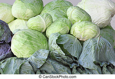 Group of Cabbages - cabbages in the market