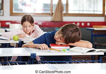Pojke, sova, på, skrivbord, In, klassrum