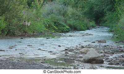 Small Mountain River - small mountain river flowing along...