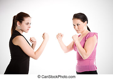 Businesswomen fighting - A shot of two businesswomen ready...