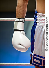 boxing - cropped view of man with boxing gloves. Copy space