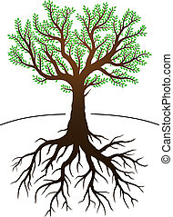 Tree and its roots - Tree illustration with green leaves and...