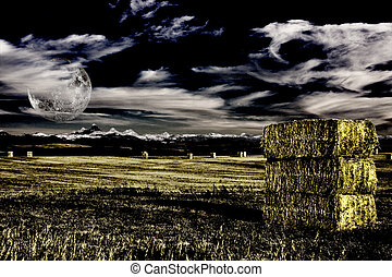 Field with hay and intentional noise