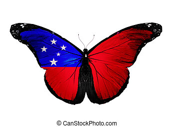 Samoa flag butterfly, isolated on white background