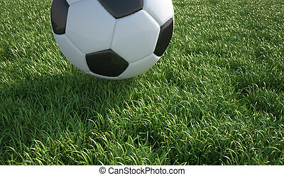 Soccer ball close up on grass lawn. The top part of the ball...