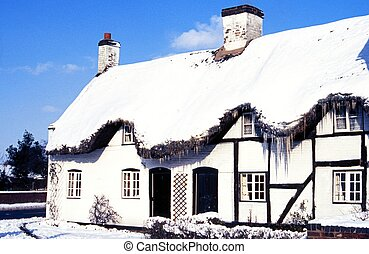 Thatched cottage in winter, UK - Thatched cottage covered...