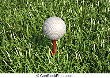 Golf ball isolated on tee in the grass - Golf ball isolated...