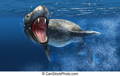 Leopard seal under water with close up on head and open...