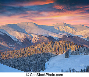 Colorful winter landscape in mountains Sunrise