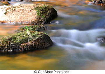 Mountain stream in the Harz National Park