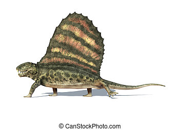 Dimetrodon dinosaur. Viewed from a side, very detailed and scientifically correct. On white background with dropped shadow and clipping path.