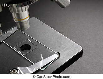 mounted slide on microscope - Scientific Glass slide mounted...