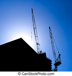Twin cranes - A beuatiful silhouette of a pair of cranes at...