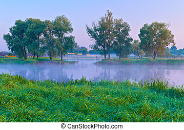 Beautiful morning with trees on the shores of the Narew...