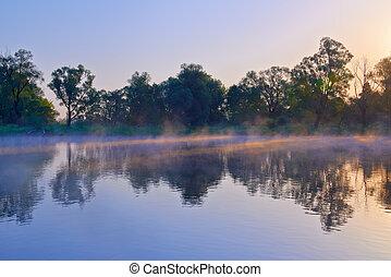 Sunrays on the Narew river. Beautiful dawn. - Beautiful...
